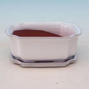 bowl and tray of water H 01, white