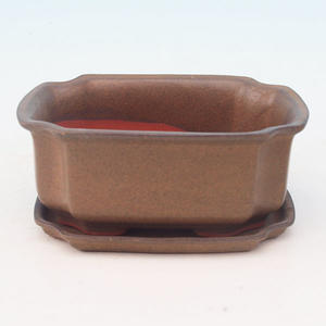 bowl and tray of water H 01, brown