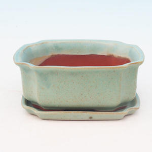 bowl and tray of water H 01, green