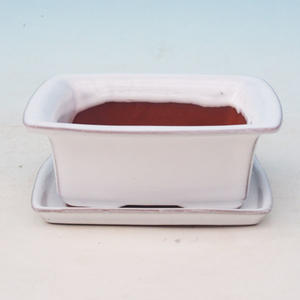 Bonsai bowl tray of water H11 +, beige