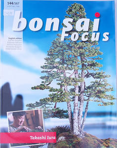 Bonsai focus - English no.144