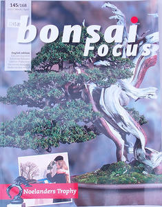 Bonsai focus - English no.145