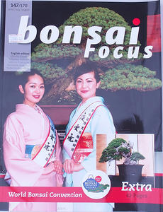 Bonsai focus - English no.147