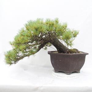 Ceramic bonsai bowl 10.5 x 10.5 x 3 cm, brown color
