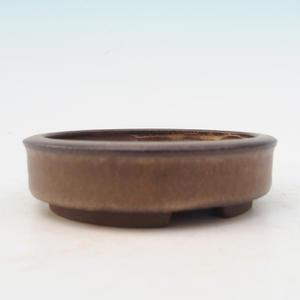 Ceramic bowl bonsai