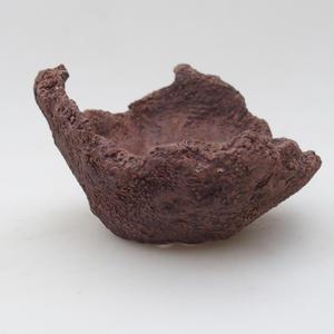 Ceramic Shell 13 x 11 x 9 cm, gray color