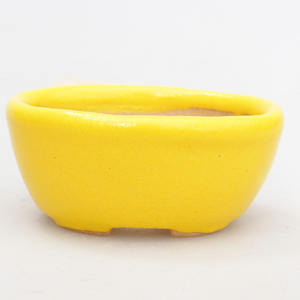 Mini bonsai bowl 4,5 x 3 x 2 cm, yellow color