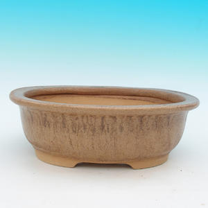 Bonsai ceramic bowl CEJ 48, dark brown