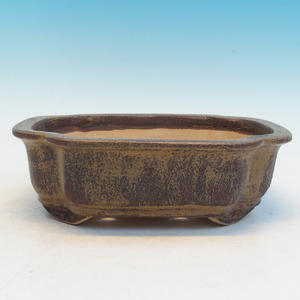 Bonsai ceramic bowl CEJ 53, brown