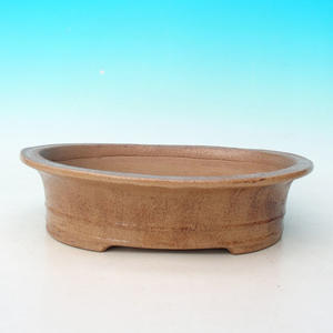 Bonsai ceramic bowl CEJ 55, beige