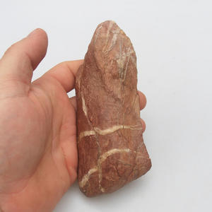 Suiseki - Stone without DAI (wooden mat)