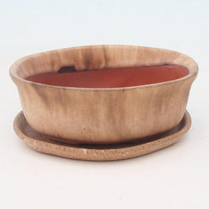 Bonsai bowl tray of water H05 +, beige