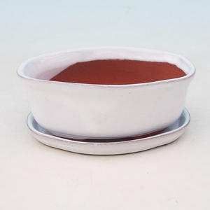 Bonsai bowl tray of water H05 +, white