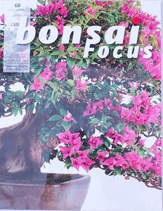 Bonsai focus - German No.68
