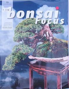 Bonsai focus - German No.72