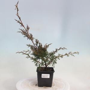 Bonsai miska 31 x 24 x 10 cm, barva béžová
