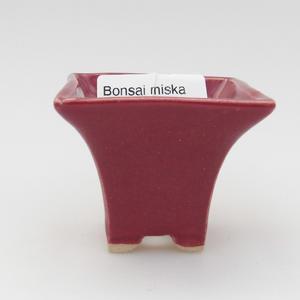 Mini bonsai bowl