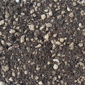 Bonsai soil bonsai master 2 liters + fertilizer 20 g free