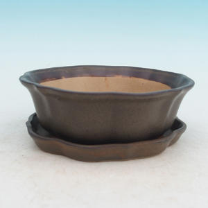 Bonsai bowl tray of water H06, brown