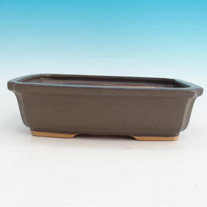 Bonsai ceramic bowl H 07, Brown