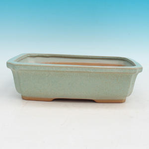 Bonsai ceramic bowl H 07, green