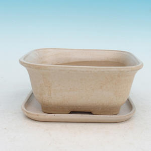Bonsai bowl tray of water H38 +, beige
