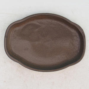 Bonsai tray of water H 05