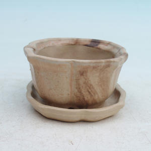 bonsai bowl and tray of water  H95, beige