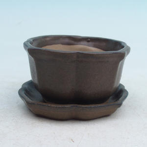 bonsai bowl and tray of water  H95, brown