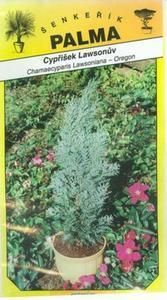 Lawson's cypress - Chamacyparis lawsoniana