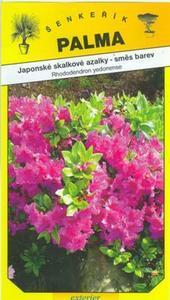 Japanese azaleas rockery - Rhododendron yedonense