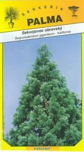 Sekvojec huge - Sequoiadendron giganteum