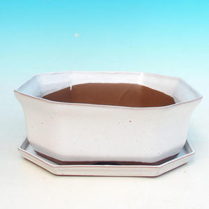 Bonsai bowl tray H14 - bowl 17,5 x 17,5 x 6,5, tray 17,5 x 17,5 x 1,5, green - bowl 17,5 x 17,5 x 6,5, sub tray 17,5 x 17,5 x 1,5