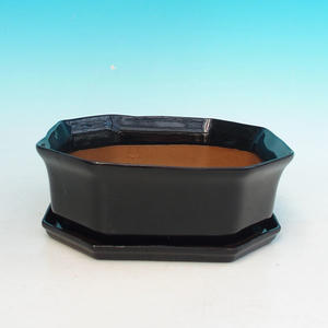 Bonsai pot podmiska + H13, black