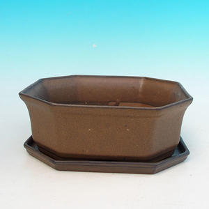 Bonsai bowl tray of water H14, brown