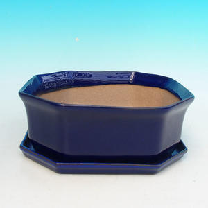 Bonsai bowl tray of water H14, blue