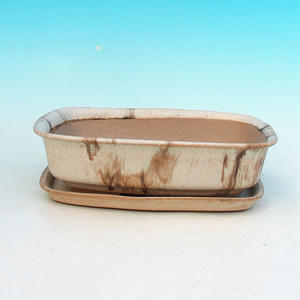 bowl and tray of water H 02, beige