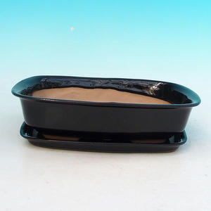bowl and tray of water H 02, black