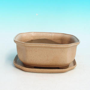 bonsai bowl and tray of water H 31, beige