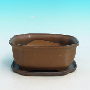 bonsai bowl and tray of water H 31, brown