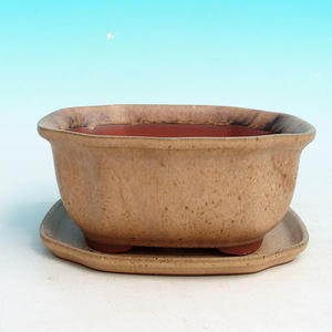 bonsai bowl and tray of water H 32, beige