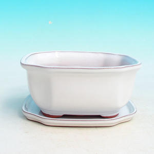bonsai bowl and tray of water H 31, white