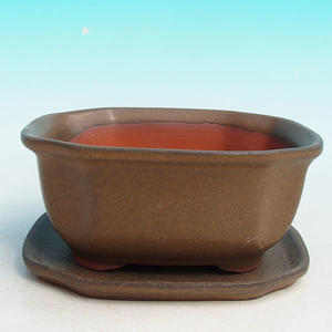 bonsai bowl and tray of water H 32, brown