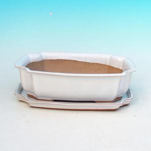 Bonsai bowl tray of water H03 +, white