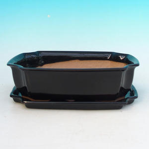 Bonsai bowl tray of water H03 +, black