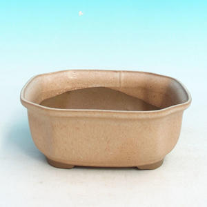 Bonsai ceramic bowl H 31, beibe