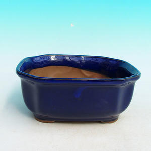 Bonsai ceramic bowl H 31, blue