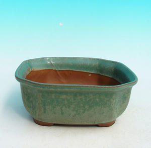 Bonsai ceramic bowl H 31, green