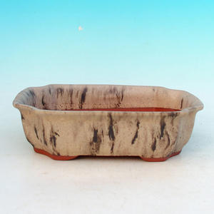 Bonsai ceramic bowl H 03, beige