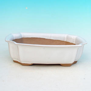Bonsai ceramic bowl H 03, white